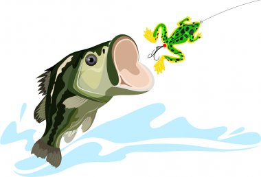 Bass and lure