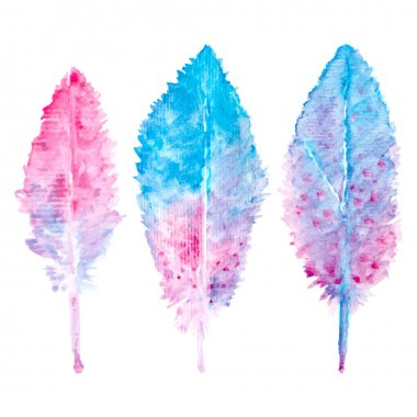 Elegant vector background with watercolor drawing feathers. clip art vector
