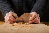 Nástroj pro obrábění dřeva. Carpenter je úspora dřeva s nože.