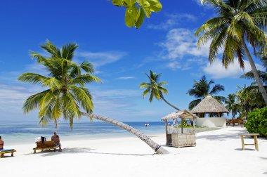 Tourists take sunbath on tropical beach on Maldives island