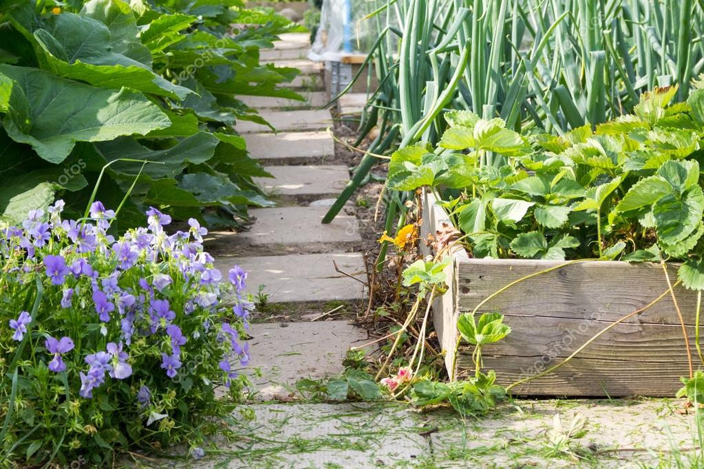 Garden path and planter