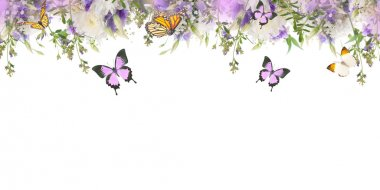 border with flowers and butterflies