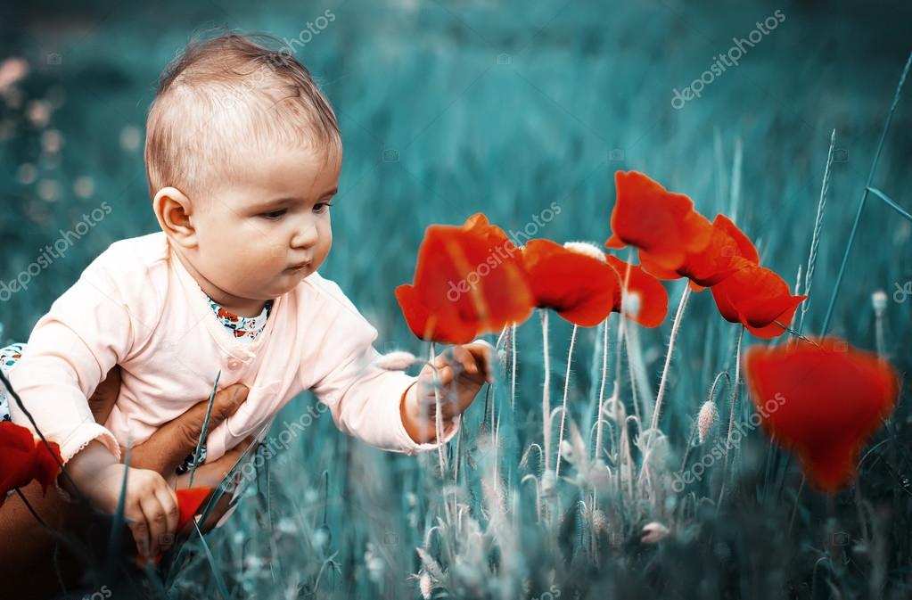 762c968e03c9 A small child playing in the field with red poppies . The baby ...