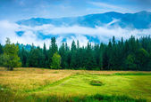 Fotografie Landscape with fog and a haystack