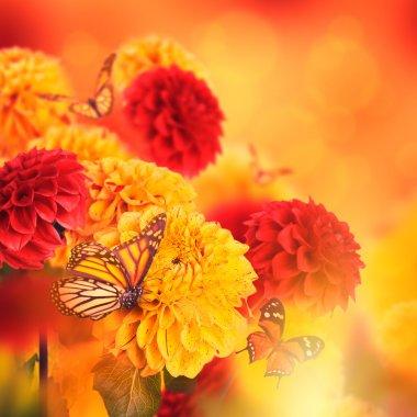 """Картина, постер, плакат, фотообои """"Хризантемы с вспышками, бабочки"""", артикул 56326647"""