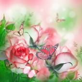 Beautiful roses and butterflies