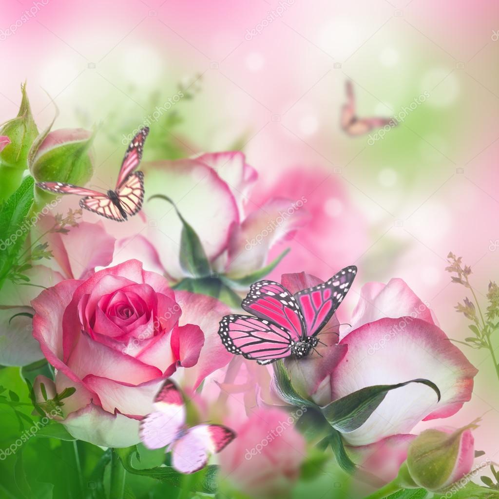 Belle rose e farfalle foto stock seqoya 91434020 for Sfondi con farfalle
