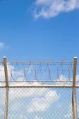 plot s ostnatým drátem
