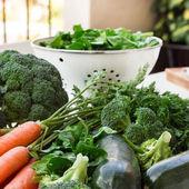 čerstvé biozeleniny