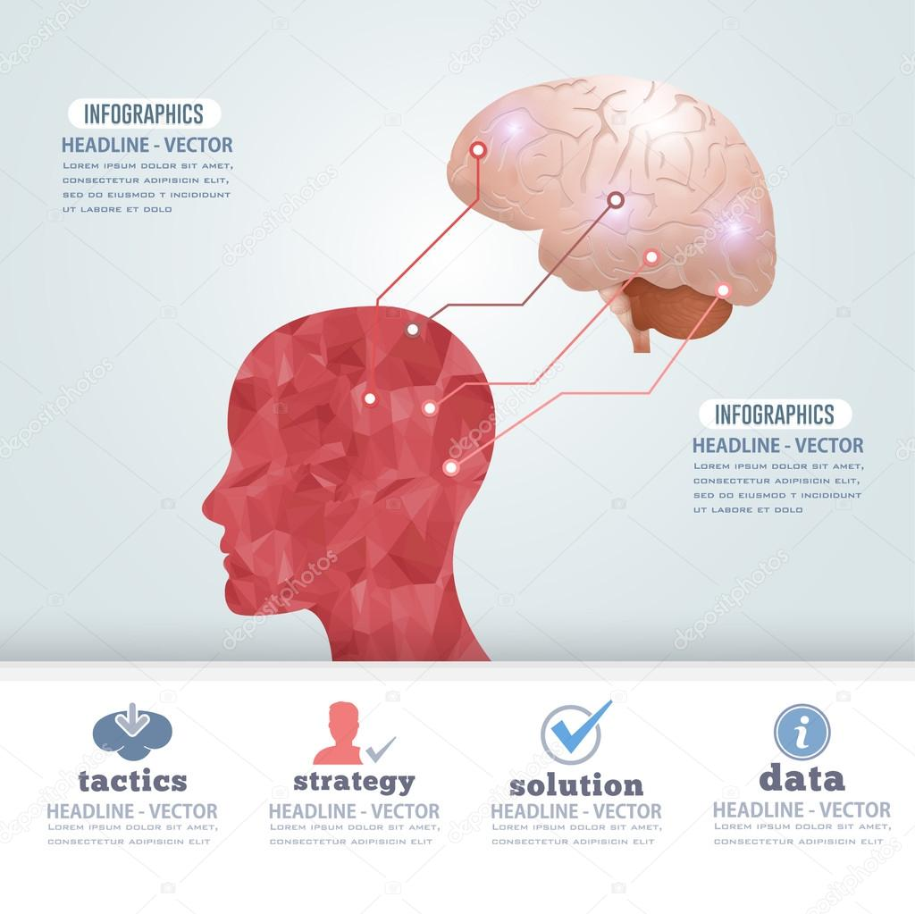 Flat Graphics Human Head and Realistic Brain Illustration, Business
