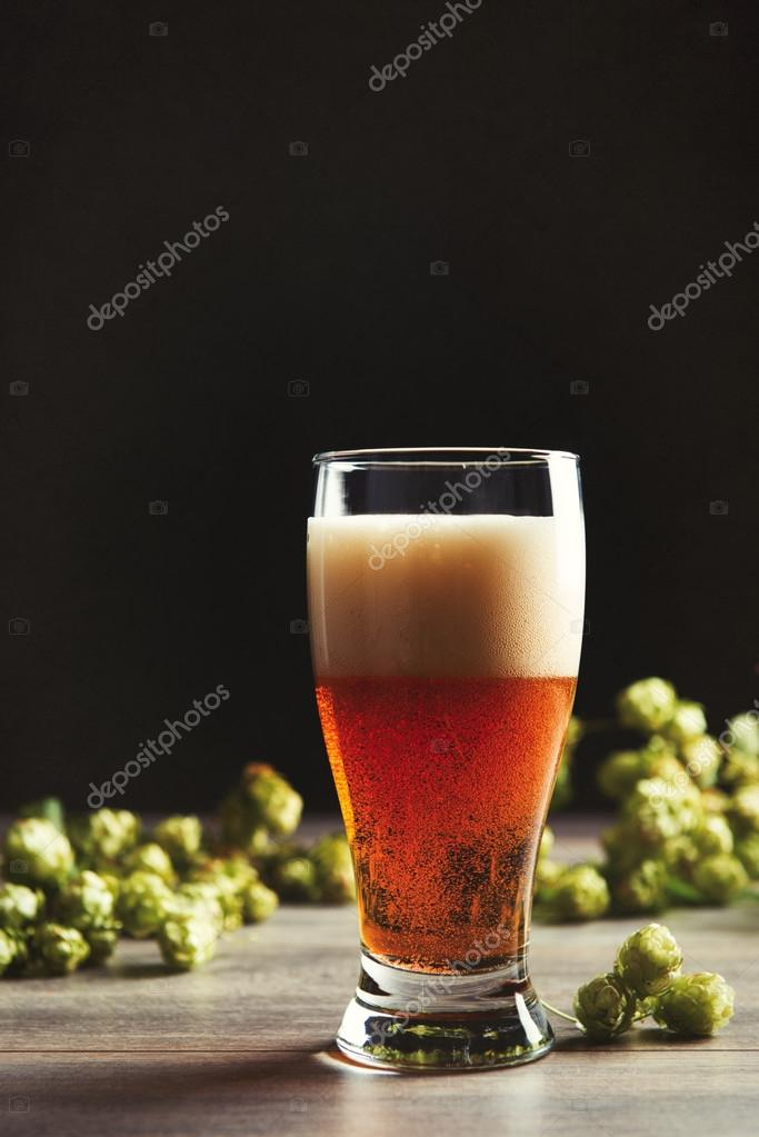 Pint Of Beer With Hops