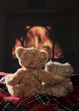 Warm & Cosy With Teddies By The Fireside