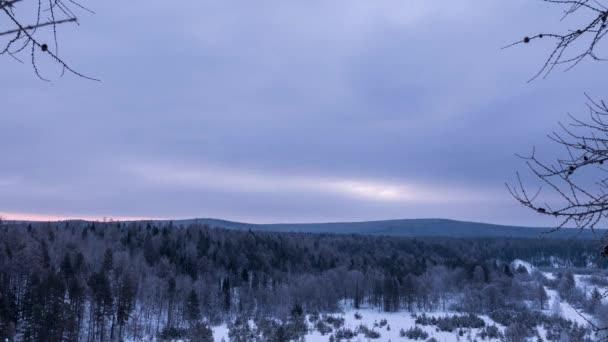 Reggel át a téli erdő
