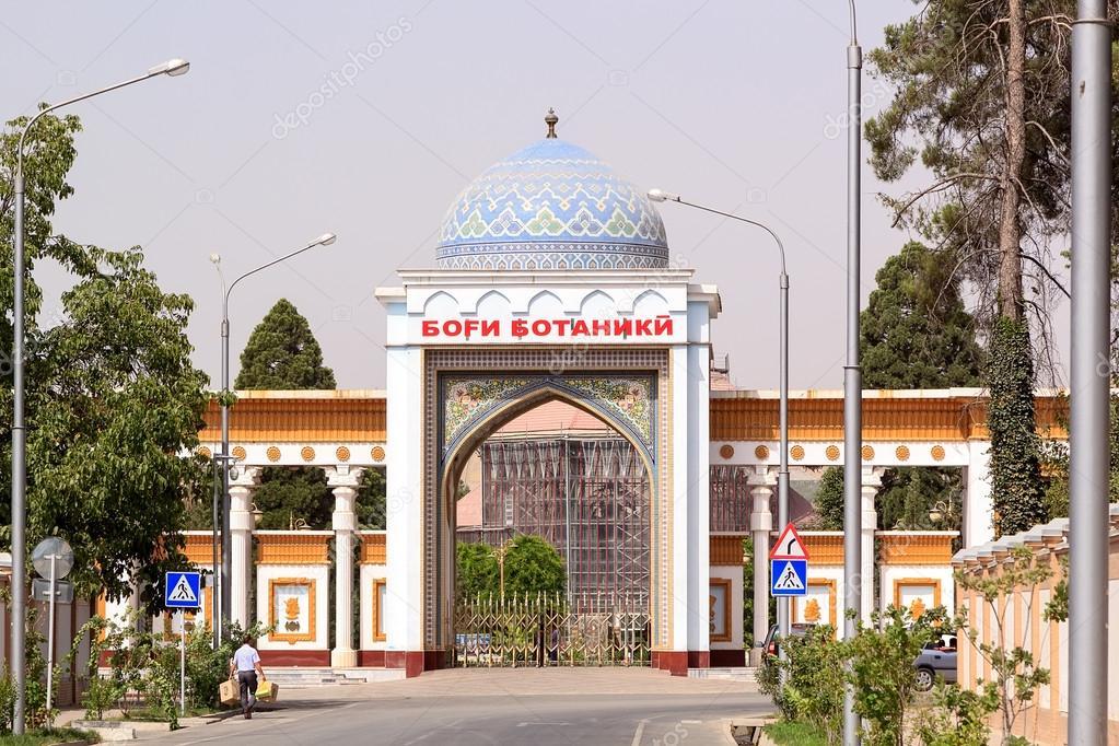 новорожденные фото город душанбе парк ботанический сад клуб полюбился жителям