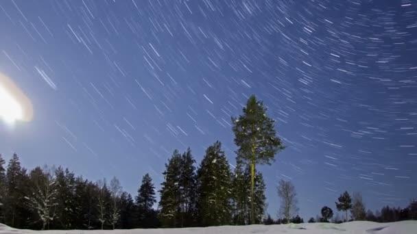 noční Zimní krajina