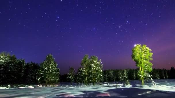 Звёздное небо и космос в картинках - Страница 38 Depositphotos_87664204-stock-video-stars-over-winter-forest