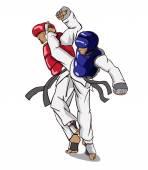 Taekwondo. bojové umění