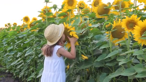 Child girl in a field of sunflowers. Selective focus.