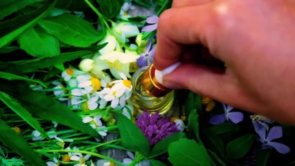 Homeopathy is a tincture of medicinal herbs in a small bottle. Selective focus.