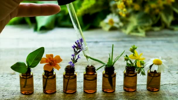 Tincture of medicinal herbs in small bottles. Selective focus.
