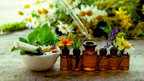 Tinktura léčivých bylin v malých lahvičkách. Selektivní zaměření.
