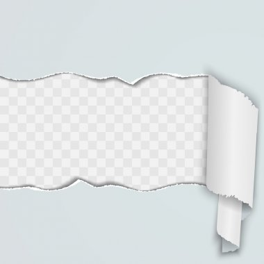 Light background with a torn strip of paper.