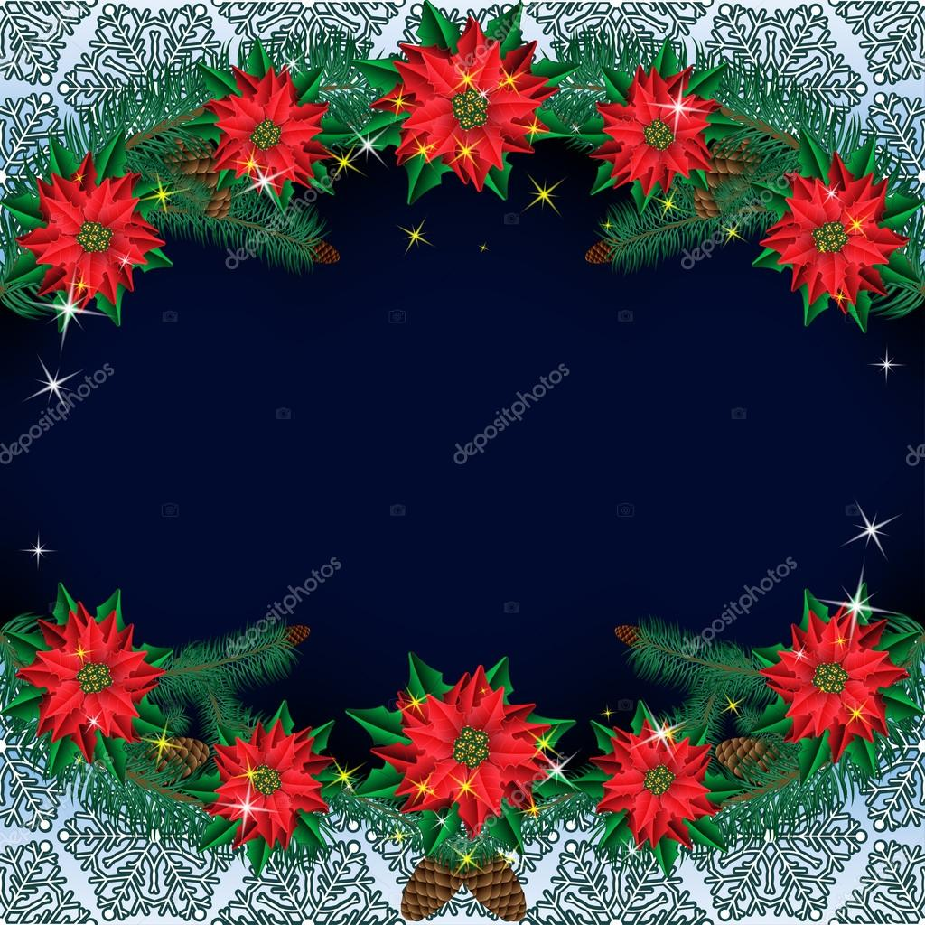 Christmas Poinsettia Flowers Background With Pine Branches On A