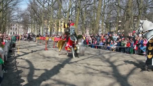 Medieval knights joust