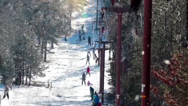 Sezóna zimních sportů