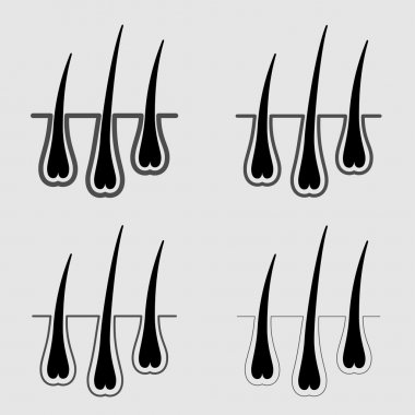 growth hair follicle icon
