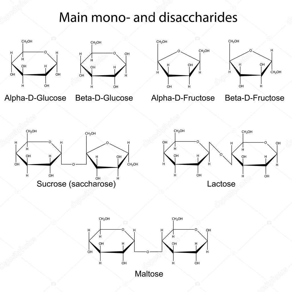 monosackarider
