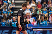 Table tennis competitions,