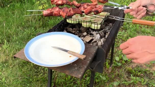 Vaření masa a zeleniny na grilu, chutné grilované vepřové maso navlečené na špejli, vaření pod širým nebem v létě, kouří se uhlí, grilování