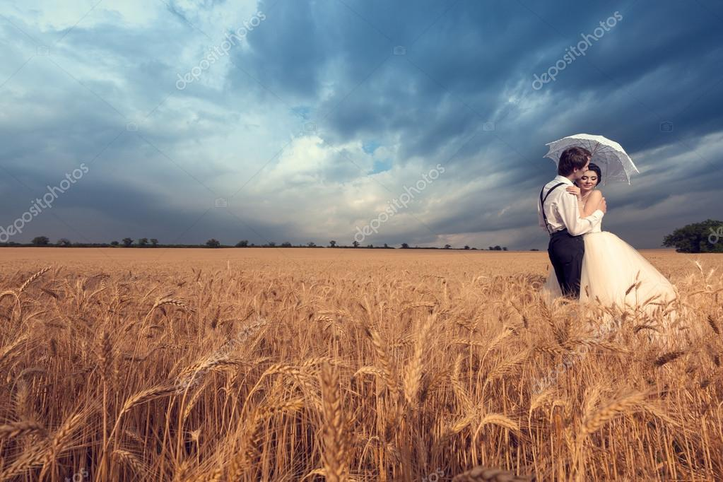 Groom kissing the bride in wheat field