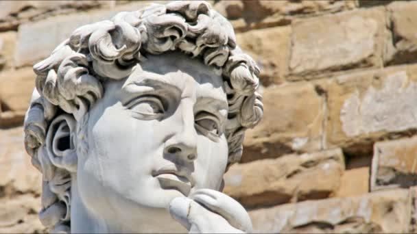 Odlévané sochy Davida Michelangelo statické video