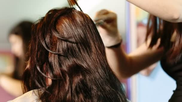 Hairdresser dye the hair to the client.
