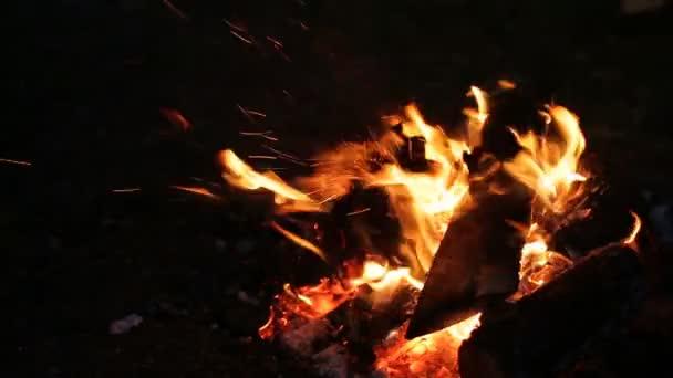 Bonfire Night v táboře