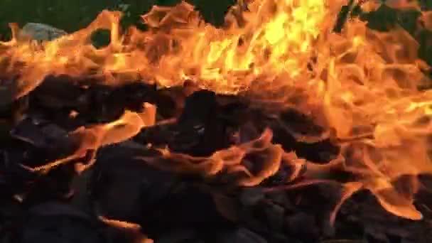 Oheň hoří