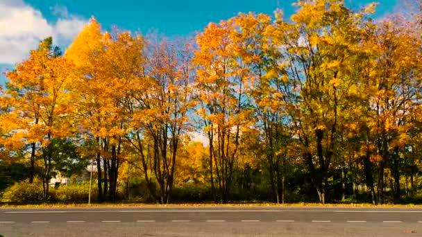 Podzimní timelapse dálnice.