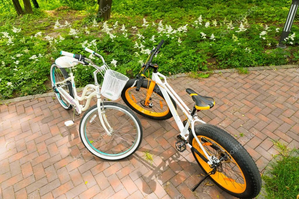Women's and men's bicycles on bricks in a park