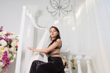 Glamorous young woman playing the harp