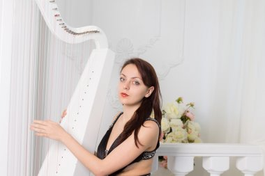 Pretty elegant musician playing the harp
