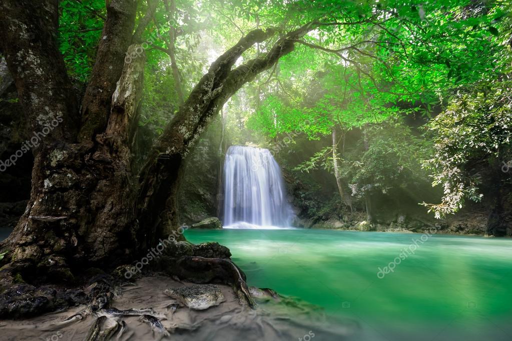 Фотообои Deep forest Waterfall