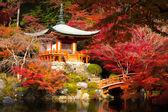 daigoji chrám