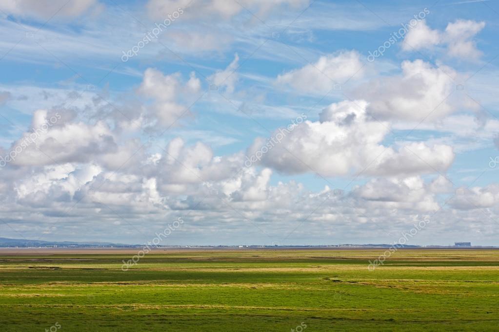 Flat river estuary landscape