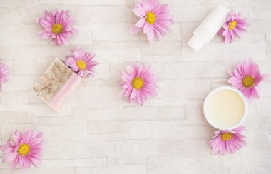 Natural  skincare products and  ingredients