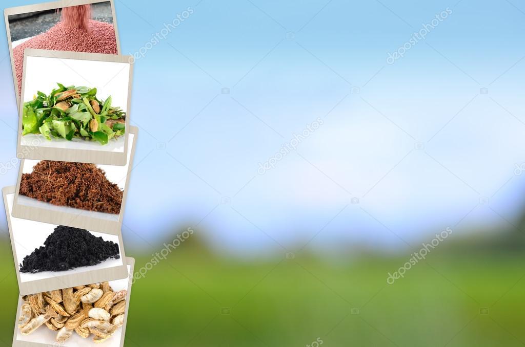 Agriculture mineral and fertilizer slide for Presentation