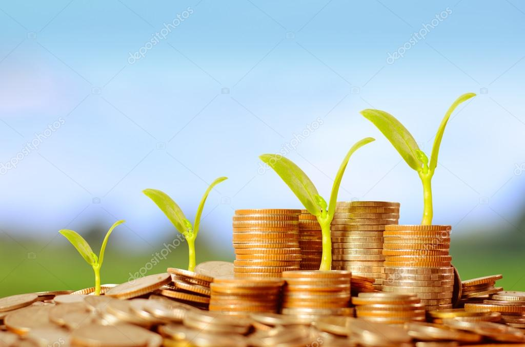 Trees growing on pile of coins money