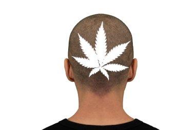 White Marijuana head