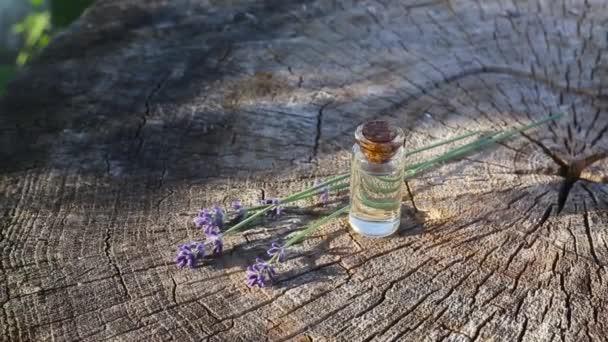 Lavendelöl auf einem hölzernen Hintergrund neben Lavendelblüten. Konzept des Parfüms mit Lavendel und Aromatherapie